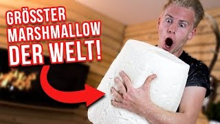 GRÖßTER Marshmallow der WELT ! / 20 KILO 😱 II RayFox