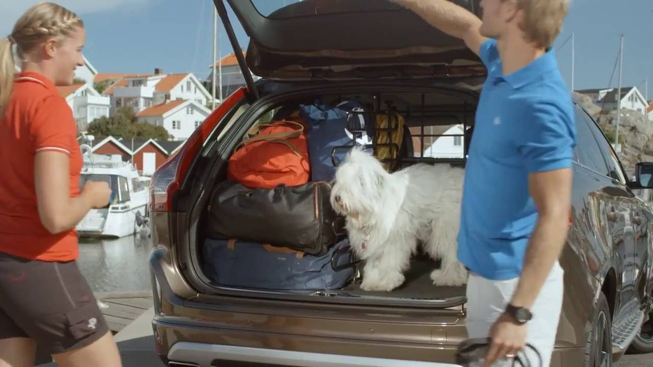 Load Cargo Divider For Car Boot