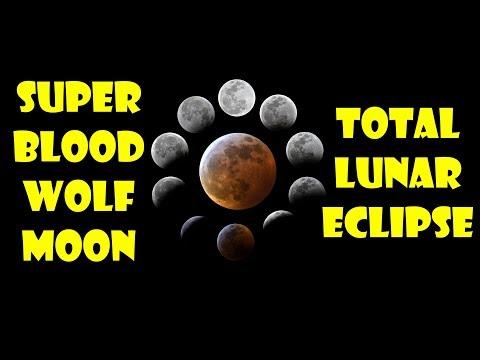 Super Blood Wolf Moon Total Lunar Eclipse - Orlando, Florida Timelapse Video