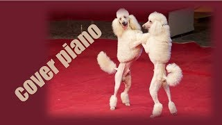 Как играть собачий вальс на пианино