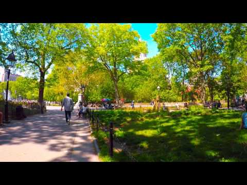 slowTV.network NYC On a Bench in Washington Square Park