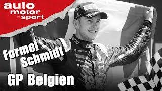 Warum musste Anthoine Hubert sterben? - Formel Schmidt GP Belgien 2019 | auto motor und sport
