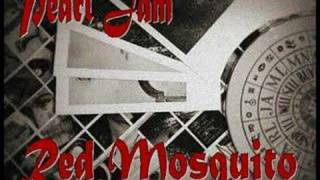 Pearl Jam - Red Mosquito