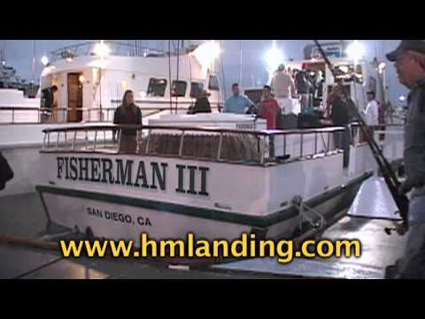 H m landing in san diego ca with dan hernandez sport for H m landing fish count