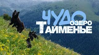 ЧУДО-ОЗЕРО ТАЙМЕНЬЕ /Горный Алтай 2021. Lake Taimen /Mountain Altai. Катунский заповедник/Katunsky