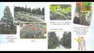 """Окружающий мир 1 класс ч.2, Перспектива, с.24-25, тема урока """"В ботаническом саду"""""""