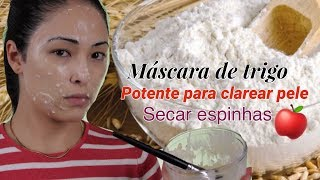 Máscara potente de trigo para clarear a pele secar as espinhas e ativar o colágeno