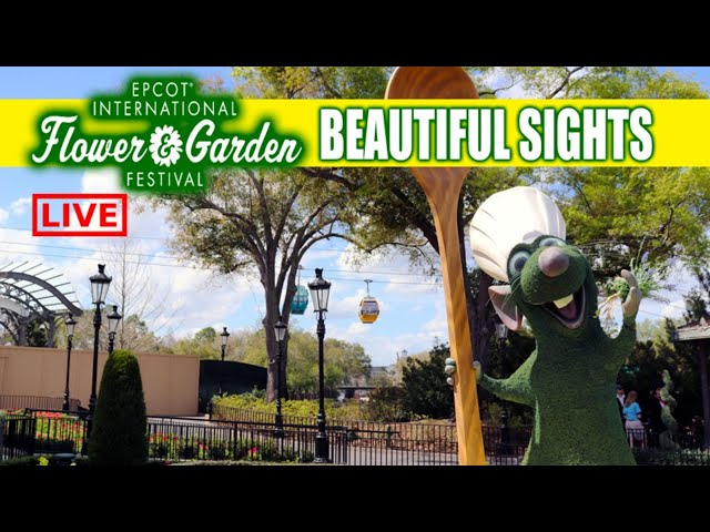 LIVE: Epcot International Flower and Garden Festival 2020