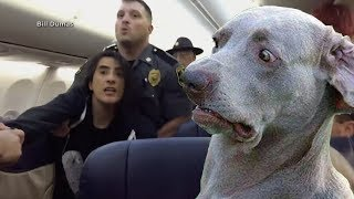 Woman Claims She's Deathly Allergic to Pets on Plane