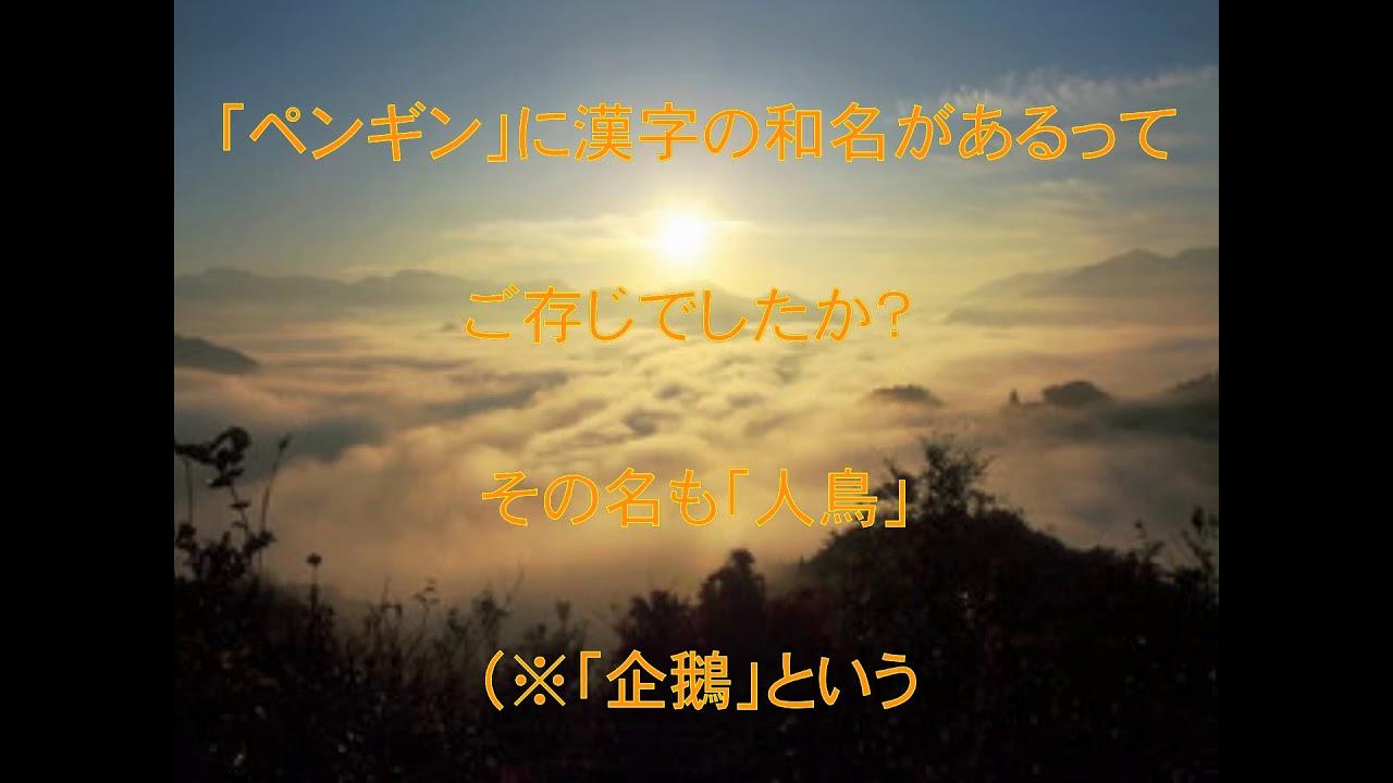 【漢字トリビア】 「ペンギン」漢字で書くと …