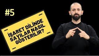 İŞARET DİLİNDE SAYILAR - İşaret Dilli Eğitimi #5