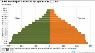 Distilled Demographics: Deciphering Population Pyramids