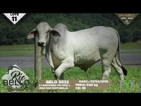 LOTE 11   BELO 3032