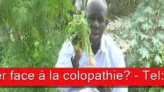 Sen wer gi yaram 519: Que faire contre la colopathie?