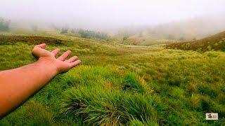 Meesapulimala - Nature Calling | Dude Explore
