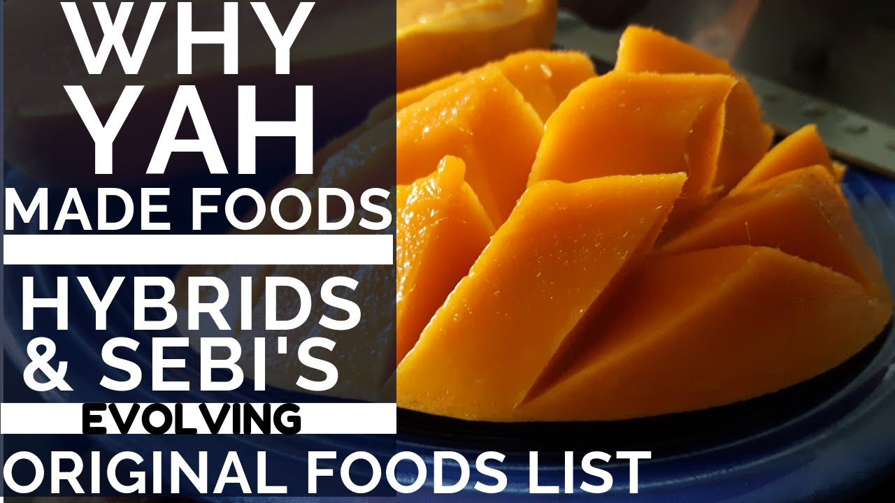 WHY YAH MADE FOODS - HYBRIDS & DR  SEBI'S EVOLVING FOOD LIST