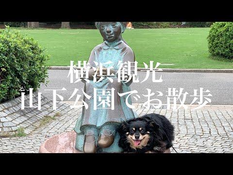 【神奈川】ワンコと旅行 横浜中華街・山下公園