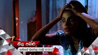 කුරුළුගේ නැතිවූ මතකය යළි එයි | Neela Pabalu | Sirasa TV Thumbnail