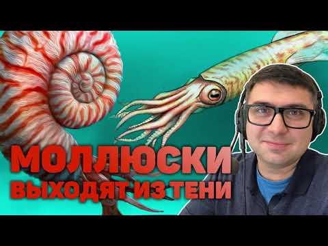 Как появились аммониты и белемниты? Почему у осьминогов нет раковины? Как устроены кальмары?