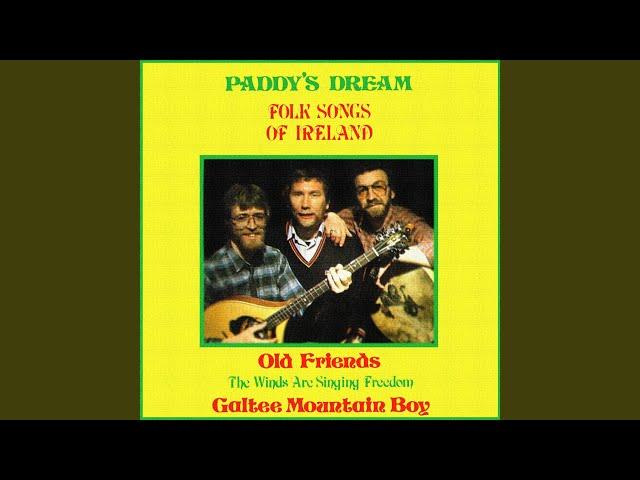 Paddy dream