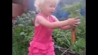 заяц(девочка вытащила морковь., 2013-10-12T06:23:58.000Z)