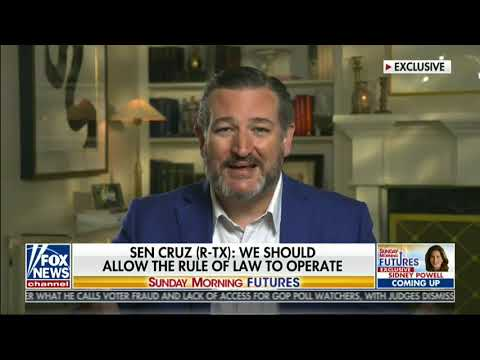 """Sen Cruz Software That Switched Trump Votes To Biden Is Used Throughout MI & """"Needs To Be Examined"""""""