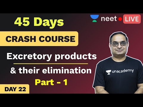 NEET: 45 Day Biology Crash Course | Day 22 | Excretory System | Unacademy NEET | Sachin Sir