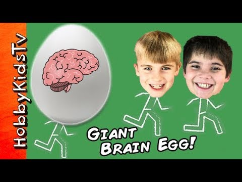 Thumbnail: World's BIGGEST BRAIN Surprise Egg! Cranium Game + Squishy Slime Toys. Science Lab HobbyKidsTV