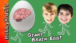 World's BIGGEST BRAIN Surprise Egg! Cranium Game + Squishy Slime Toys. Science Lab HobbyKidsTV