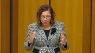 Parliament - 31 May 2017 - Medicare Cuts in Kingston