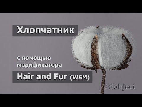 Моделирование Хлопчатника  в 3d Max. Hair And Fur (WSM)