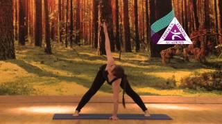 Yoga - Parivritta Prasarita Padottanasana (Revolved Wide Leg Stretch Pose)
