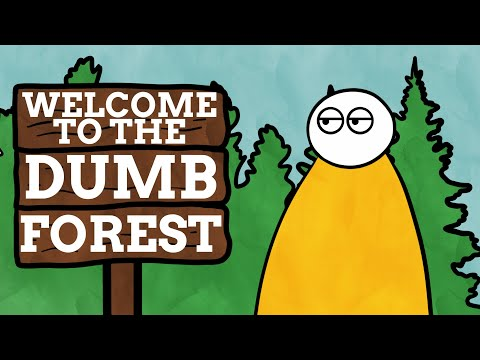 The Beautiful Forest With A Dumb Name