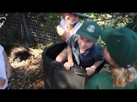 Sustainable schools - kids growing a better future