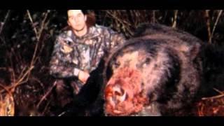 Der König der Bären