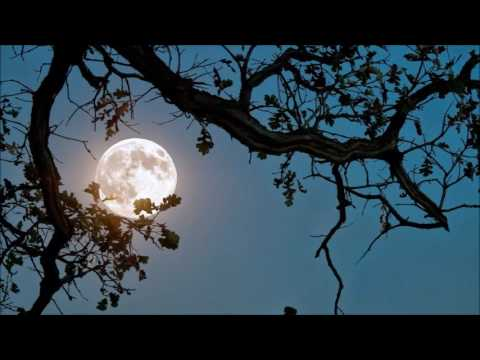 Suite bergamasque, L. 75: III. Clair de lune (for Harp Solo)