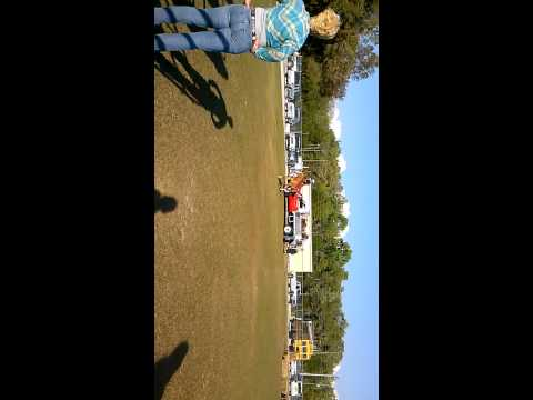 Crystal River Middle School FFA day horse display