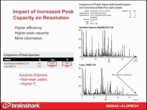 The HPLC Advantage:Increased Peak Capacity, Peptide Maps