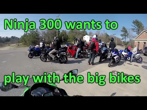 Ninja 300 hanging out with the big bikes!