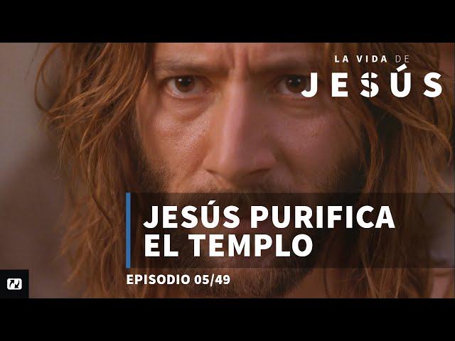 Jesús purifica el templo   La vida de Jesús   5/49