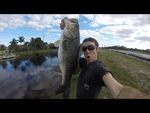 Two 9lb Florida Canal Largemouth Bass. Fishing Florida Day 1