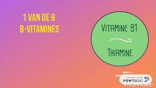 8B_Vitamine B1