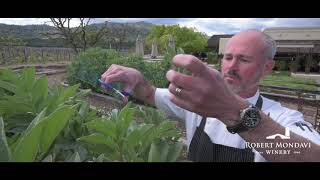 Frittata with Spring Vegetables with our Winery Chef