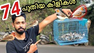 ഒരു കടയിലെ കിളികളെ മുഴുവൻ മേടിക്കാം | Buying 74 Birds | First time in Kerala
