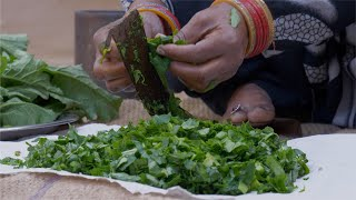 Closeup shot of a woman cutting mustard using a traditional vegetable cutter / paniki - Indian Village Kitchen