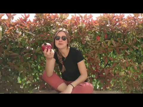 Acquistare Frutta e Verdura Online su FruttaWeb.com, come arriva from YouTube · Duration:  1 minutes 23 seconds