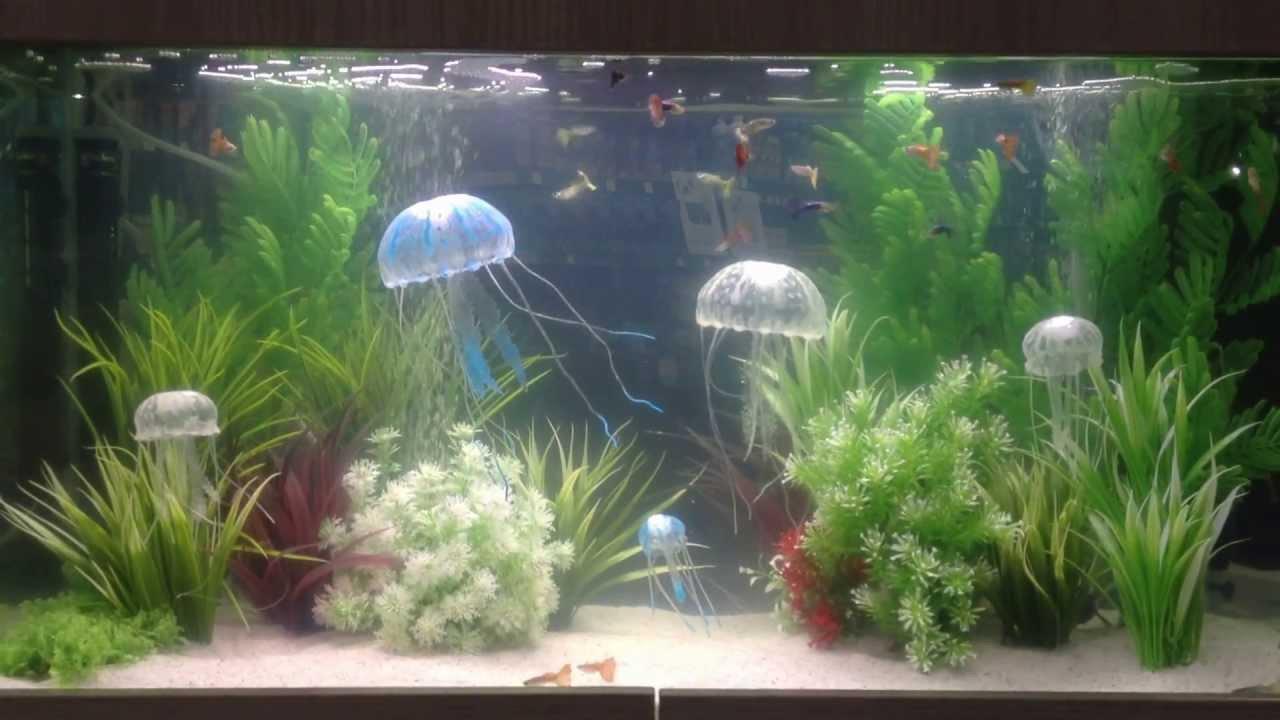 Jbl medusa fish tank jelly fish decoration youtube for Aquarium jellyfish decoration
