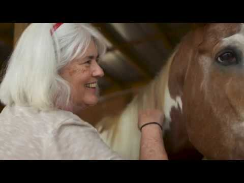 Purina And The Clydesdales Surprises Deserving Horse Rescue In FL
