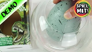 XXL Dino Ei | Jumbo Grow Egg zum ausbrüten & züchten | Experiment: Wird ein Dinosaurier schlüpfen?