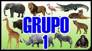 COMO JOGAR NO JOGO DO BICHO - 9 GRUPOS PRA GANHA NO BICHO - YOU TUBE